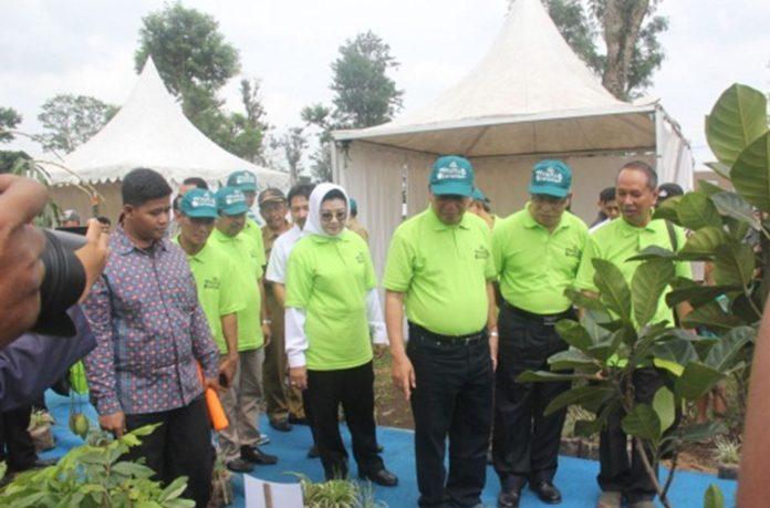 Menteri Risetdikti Resmikan Pusat Industri Bibit Buah Nusantara di Subang