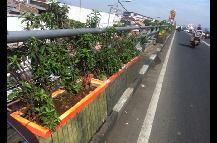 Diduga, DPKP Cimahi Simpangkan Biaya Perawatan Pot Bunga
